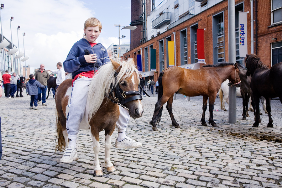 Smithfield Square Horse Fair: Entertainment, Heritage and Sales